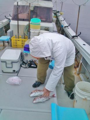 20140305新潟名立港 鯛釣り (22)
