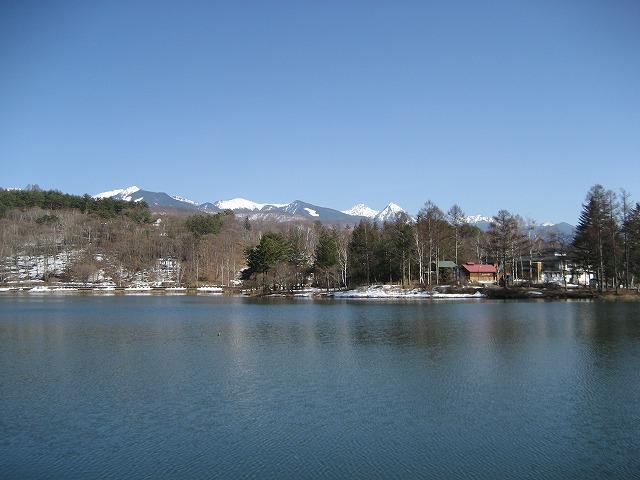 20140327蓼科湖のさくら (5)