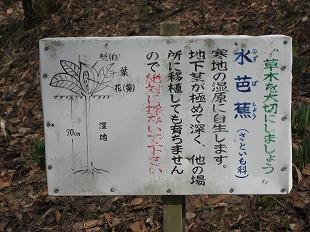 20140402みどり湖 (31)