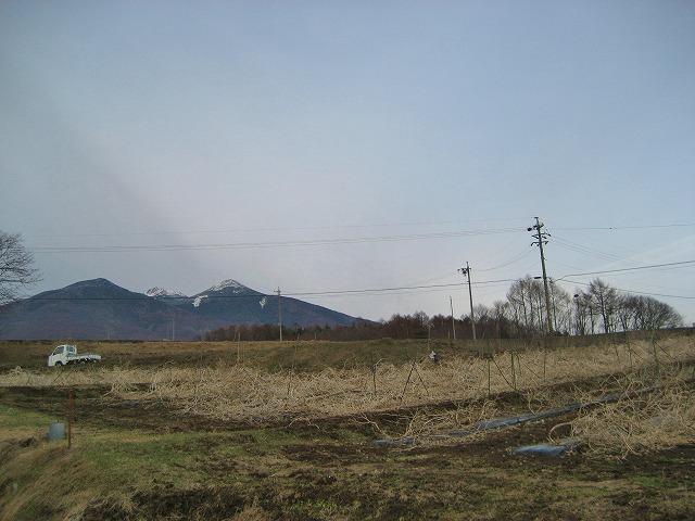 20140331バディアス農園 (2)