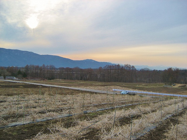 20140331バディアス農園 (8)