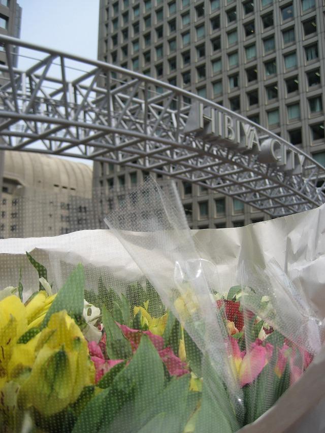20140416東京でアルストロメリア (5)