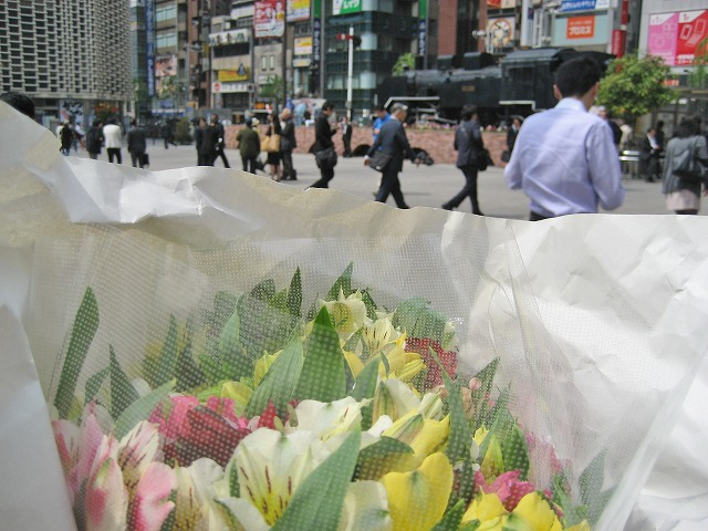 20140416東京でアルストロメリア (7)