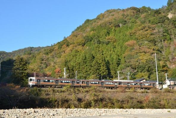 飯田線544M313系普通列車(2014年11月21日)