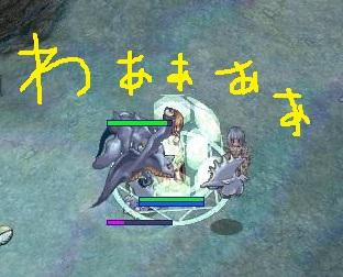 0911_12.jpg