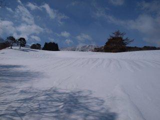 s02吾妻山麓放牧場2