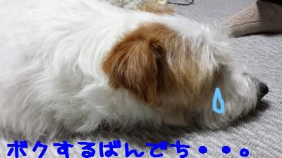 20140501_162423p
