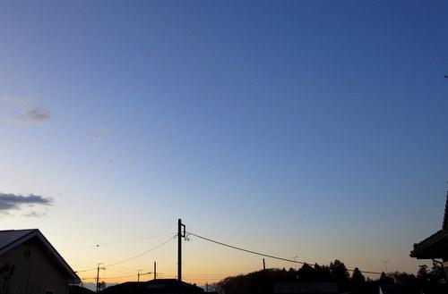 IMG_5950.jpg