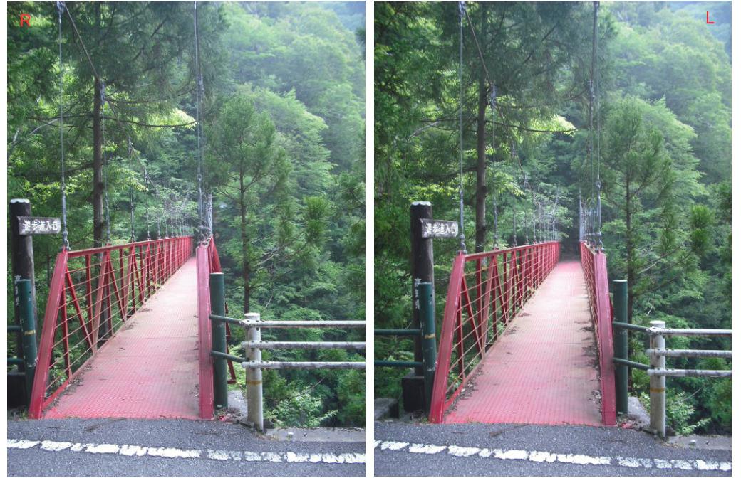 1_吊り橋RL
