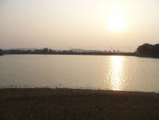 夕日に浮かぶ池