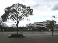 久岐の浜広場
