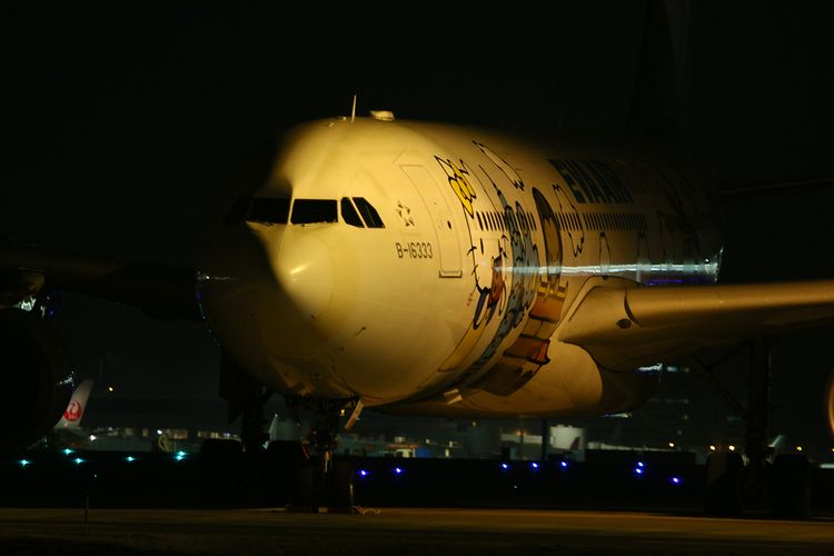1403羽田空港① (31)FC2