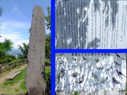 沼津市香貫山の若山牧水の読んだ短歌と香貫山で見られる野鳥の看板を写真撮影した