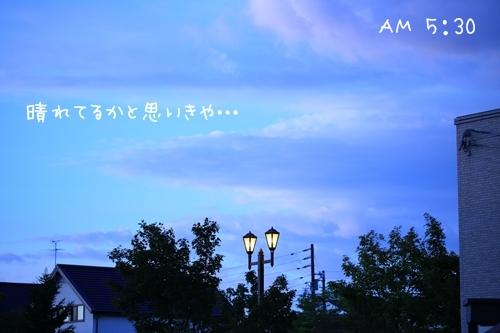 7G6A5132.jpg