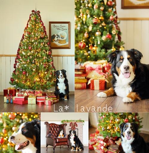 Christmas-99.jpg