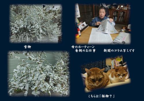 ・祇convert_20140307204632