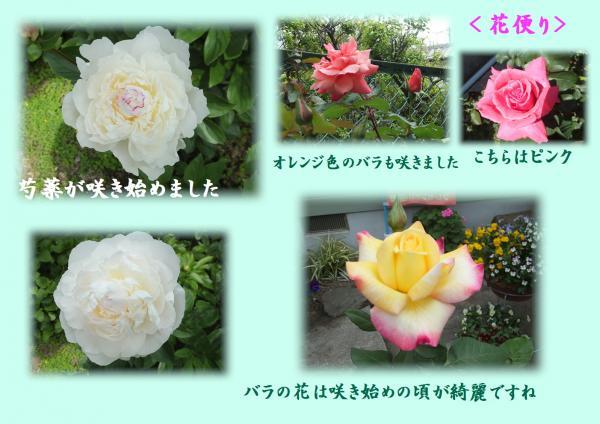 闃ア萓ソ繧垣convert_20140428002918