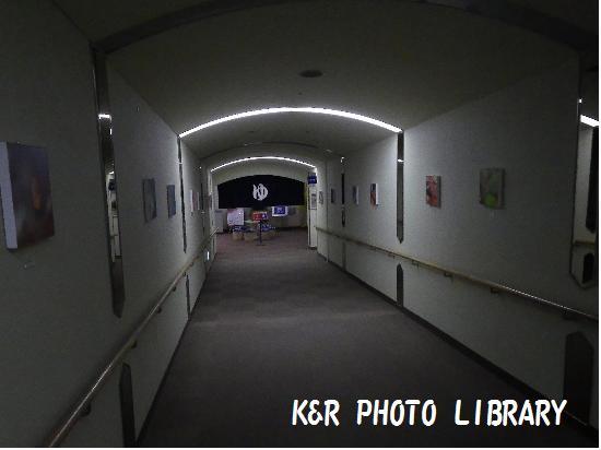 11月30日長い廊下