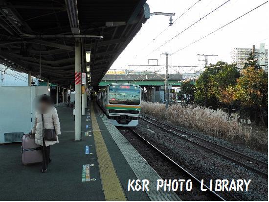 1月13日湘南新宿ライン(宇都宮行)