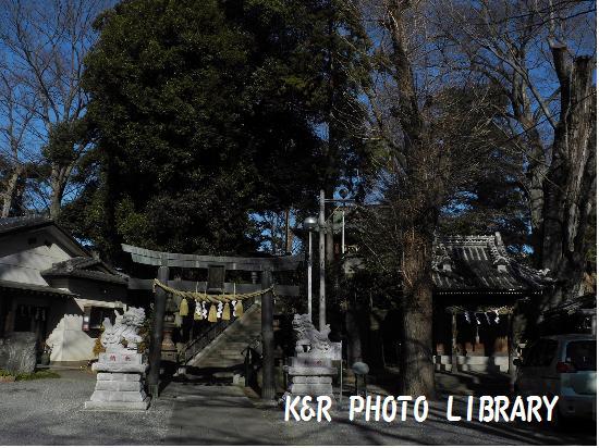 1月13日星宮神社