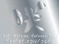 sakimatomecup_2014_02finalist.jpg