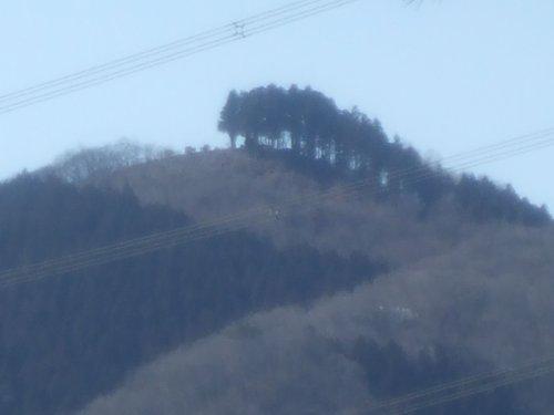 kounosu8.jpg