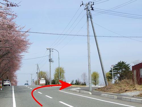 omoteyakurai6.jpg