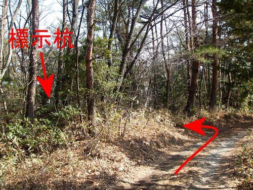 ootoyama5.jpg