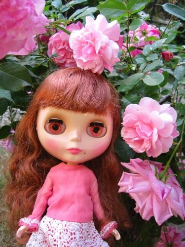 薔薇は薔薇は・・・ギョギョッ