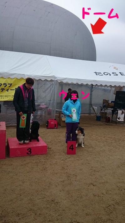 fc2blog_20141110211254a8e.jpg