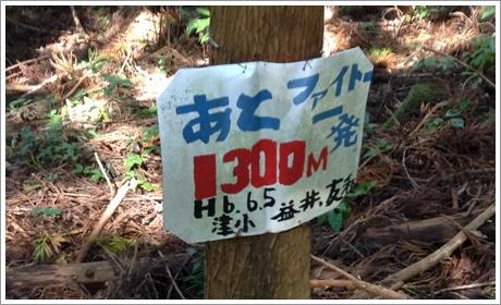 aonoyama08.jpg