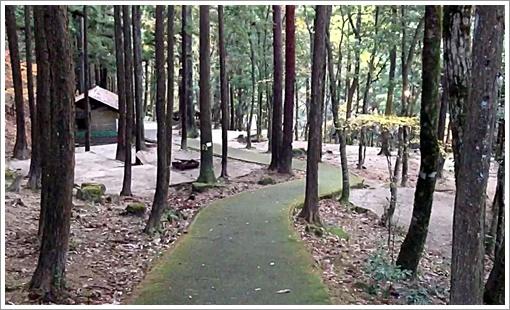 jakuchi_camp06.jpg
