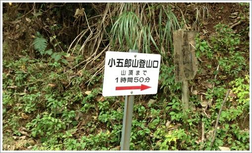 kogoro05.jpg