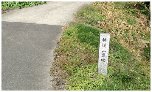 nosakayama03.jpg