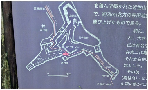 tsuwanojo18.jpg