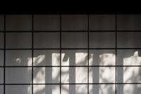 20140216竹原GXR_SUMMICRON50㎜f2-9