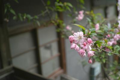20140403_Onomichi_DP2Merrill-18.jpg
