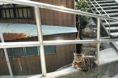 20140403_Onomichi_DP2Merrill-1_20140423223324977.jpg