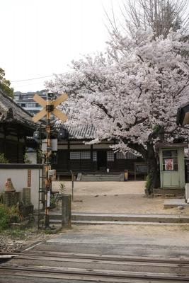 20140403_Onomichi_DP2Merrill-1_20140427220755f3c.jpg