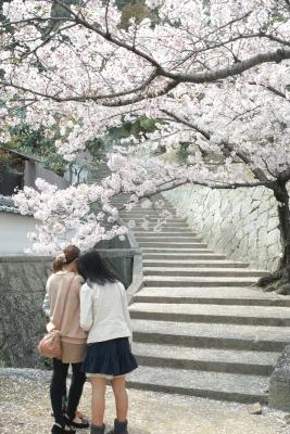 20140403_Onomichi_DP2Merrill-2_20140419094008699.jpg