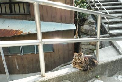 20140403_Onomichi_DP2Merrill-2_20140423223325b4e.jpg