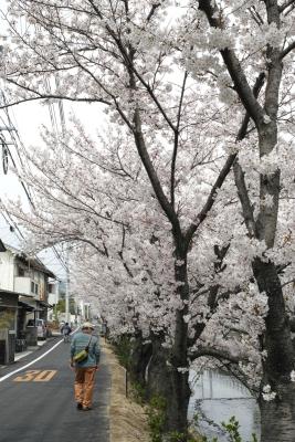 20140403_Onomichi_DP2Merrill-2.jpg