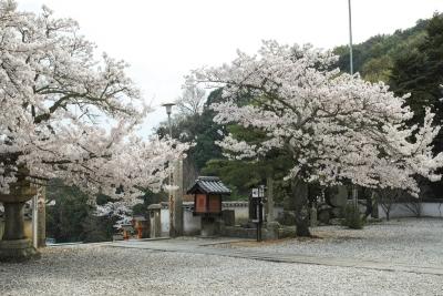 20140403_Onomichi_DP2Merrill-8_20140417230449f2c.jpg