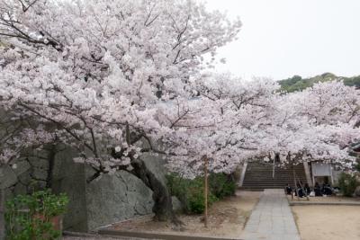 20140403_Onomichi_GRD4-1.jpg
