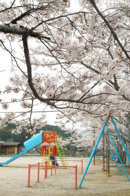 20140412-playgroundtoAdults.jpg