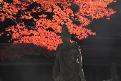 20141105極楽寺00009