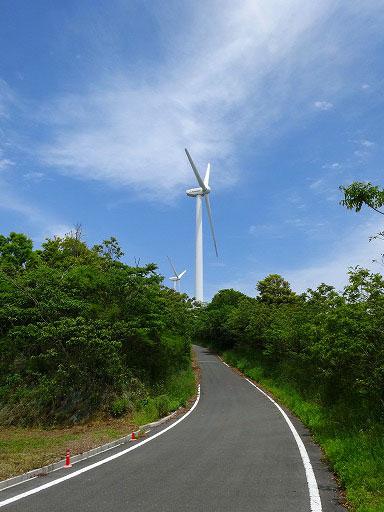 風の丘03