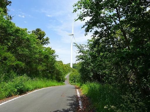 風の丘07