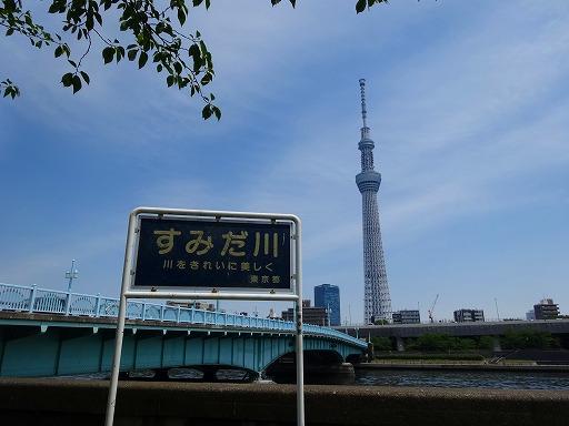 隅田川11