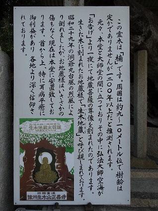 正善寺11